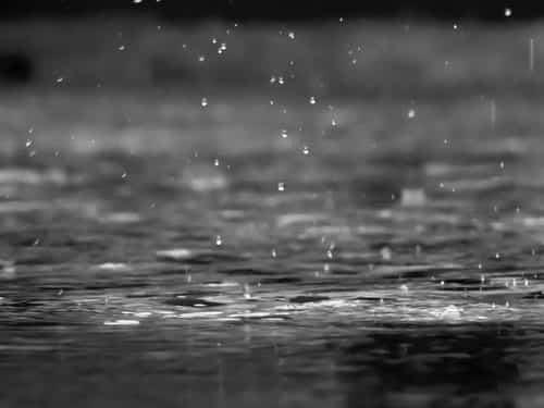 Donde la lluvia es arte